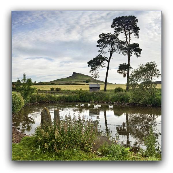 Airyholme Farm pond by YorkshireSam