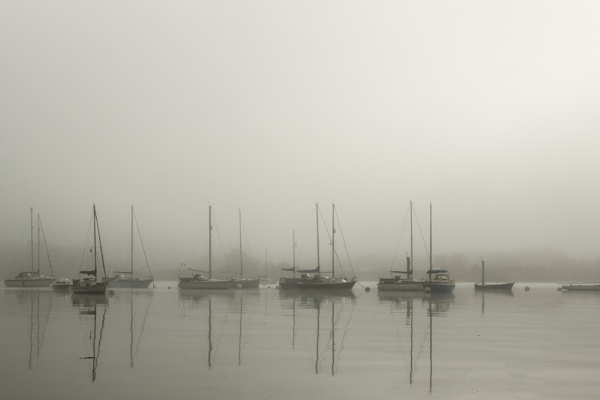 Masts in the mist 3 by marktc