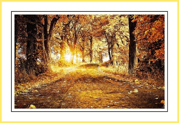 Golden Sunrise. by WesternRed