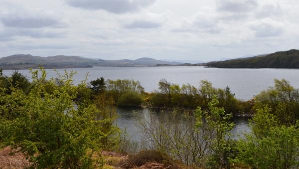 Llyn Trawsfynydd/ Lake by netta1234