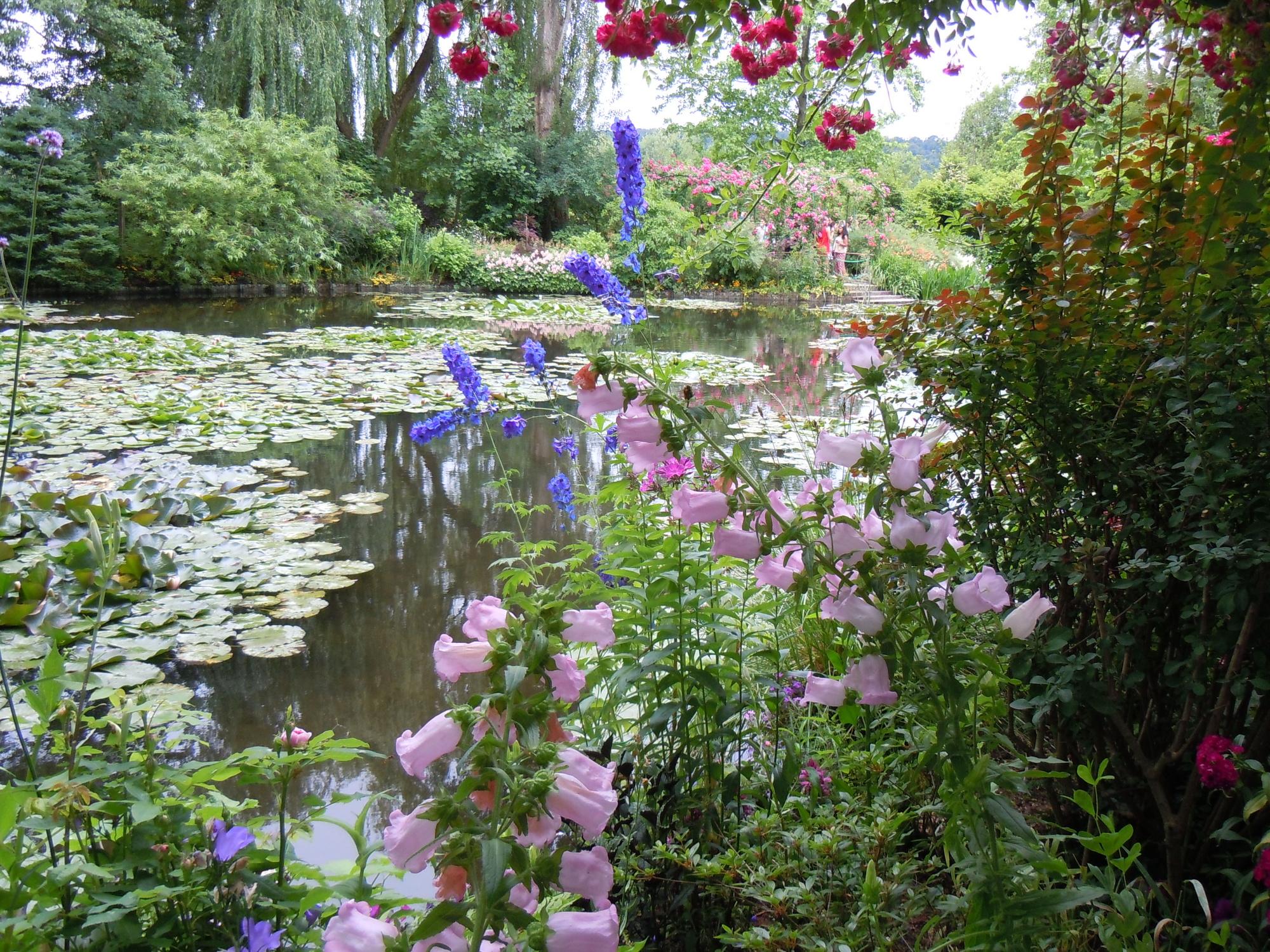 Claude Monet's Lily Pond