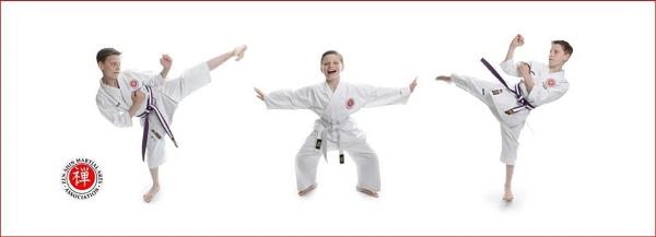 Karate Kids by jason3000
