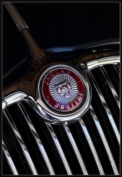Jaguar Emblem by Morpyre