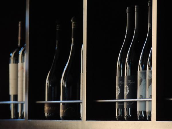 Vino by Aldo Panzieri