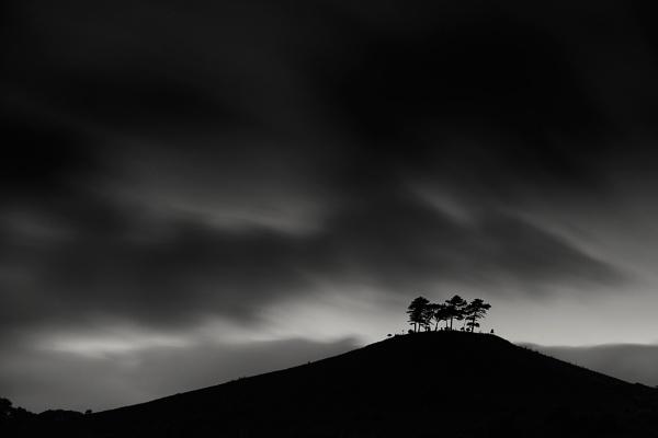 Colmers Hill, Dorset by derekhansen