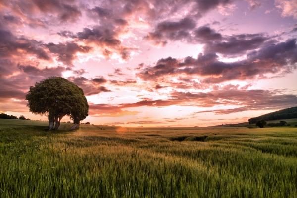 Sunday Sunrise by waltergeddes