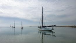 Calm Sail