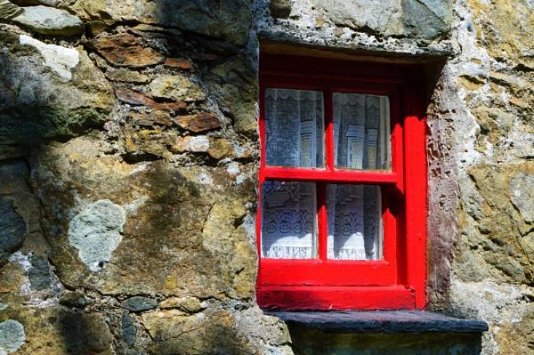 Back window by netta1234