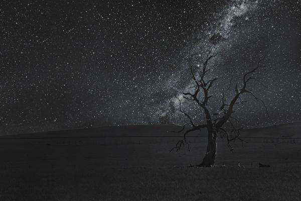 Unfinished image by nishant101