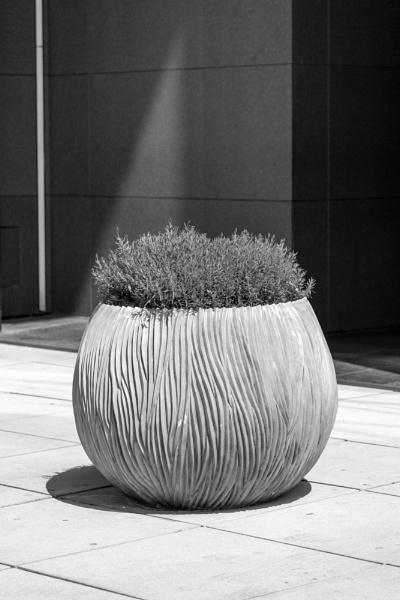 Vase by rninov