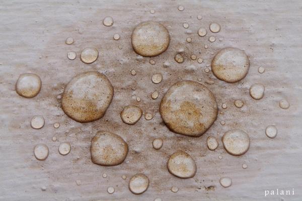 drop 1 by palaniappan