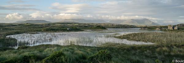Connemara Evening light by bouic
