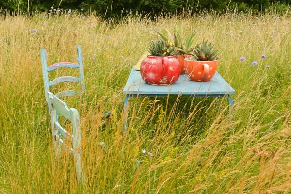 Kathy Brown\'s Garden by Suzicoo