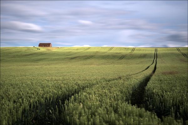 barn again by Jon.H