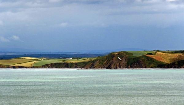 Across The Bay by KarenFB