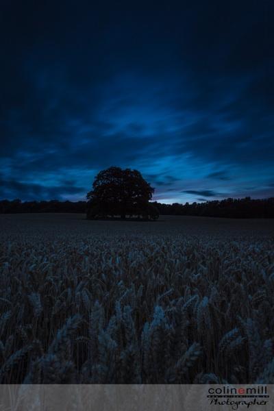 Dark Sky by BigCol