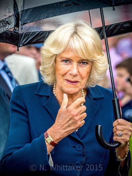 HRH Camilla - Duchess of Cornwall by robdebank
