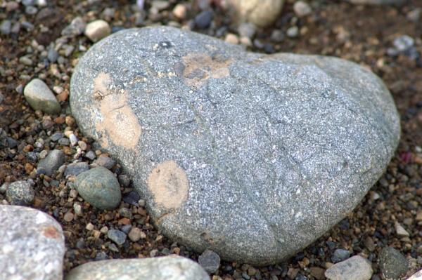 Heart of Stone by Rebeak