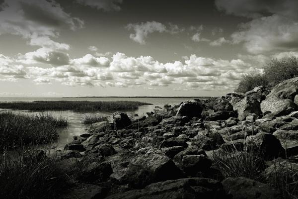 Pegwell Bay by newty1
