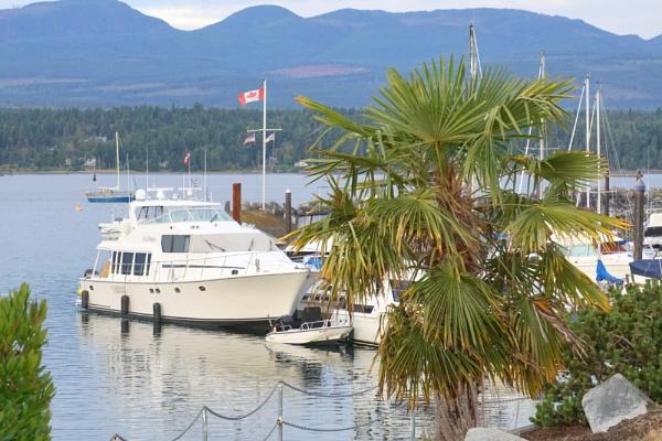 Tropics  Yacht? by tonyguitar