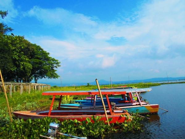 Rawa Pening - Lake