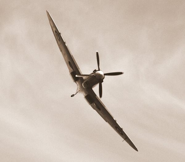 Spitfire by johnlwadd