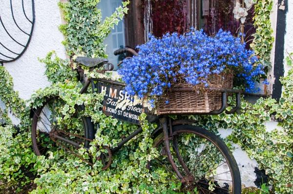 Bicycle in Cartmel by bobtl