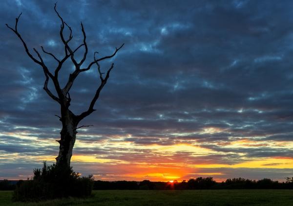 sundown by DCox