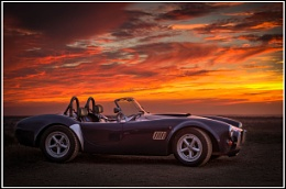 Sunset Cobra
