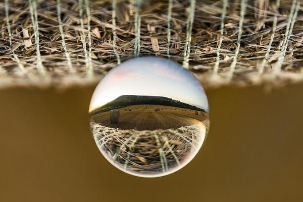 Depth Of Field by sitan1