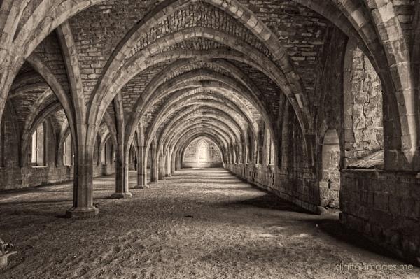 Cellarium by Alan_Baseley