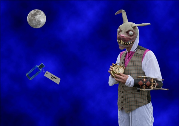 The Dark Side of the White Rabbit by Scippy