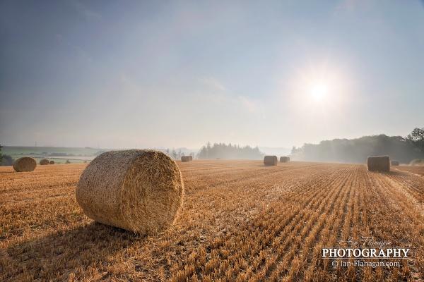 Harvest Mist by Ian71