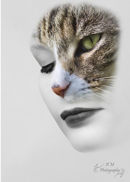 Cat Woman by lukara