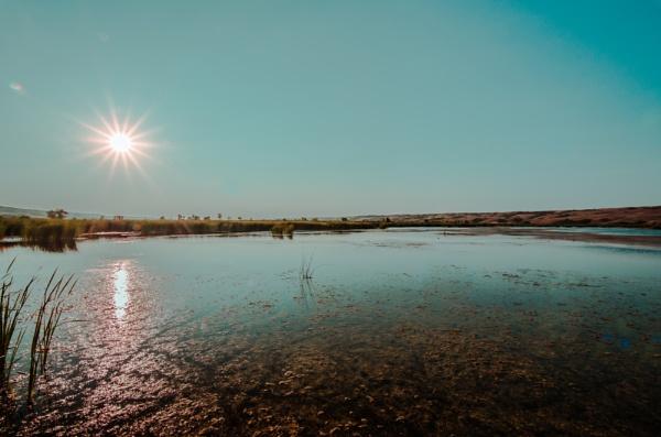 Buffalo Pound Lake by Marty_Woodcock