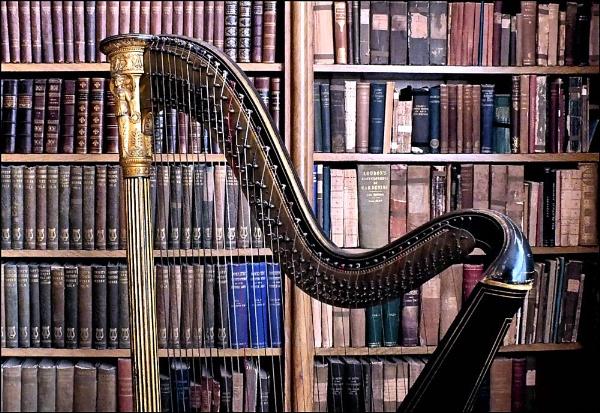 Harping On by pamelajean