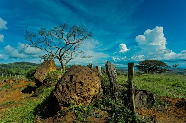 Guanacaste tracks by annettep38