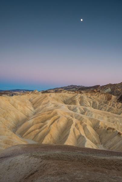 Desert Silence by Trevhas