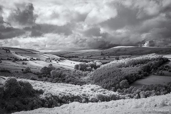 Bretton Clough by gala