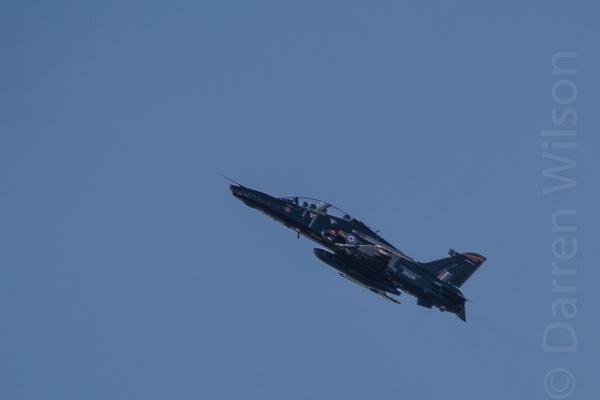 Hawk type 2 by darrenwilson41