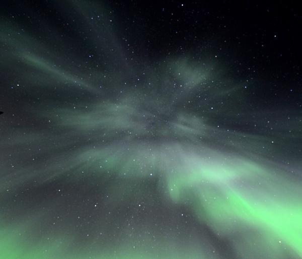 The Night Sky Speaks by Rebeak
