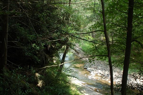 Trough Creek Park by Hmccdc