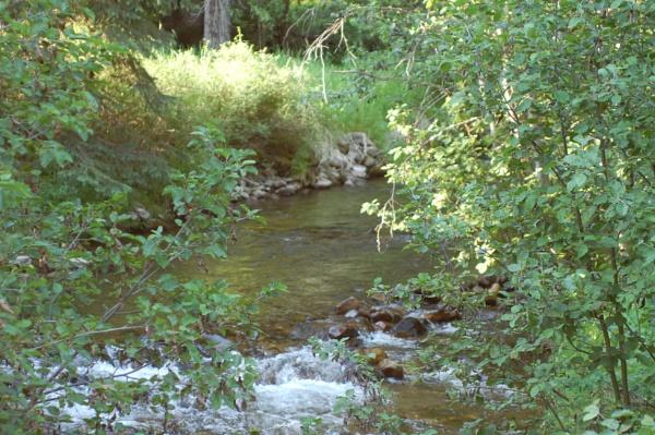 Trough Creek by Hmccdc