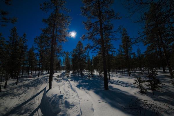 Moonlight Jukkasjavi Arctic Sweden by Legend147