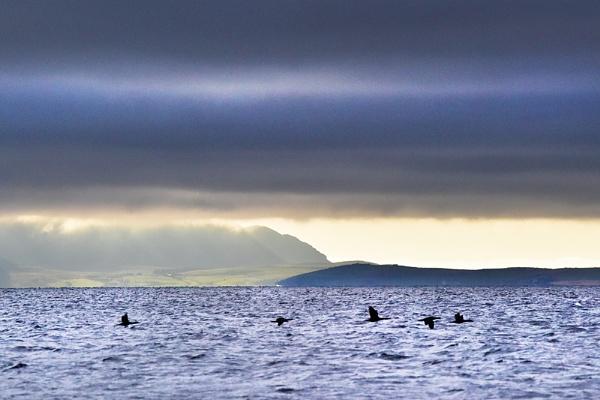 Scapa Flow by AndrewAlbert