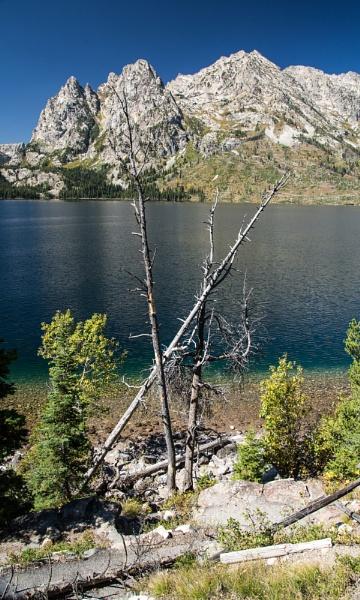 Grand Teton Mountin Range by Gavin_Duxbury