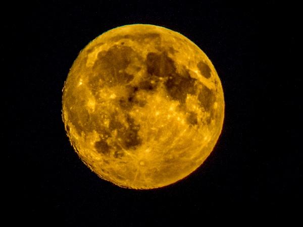 Big Moon by sdixon2380