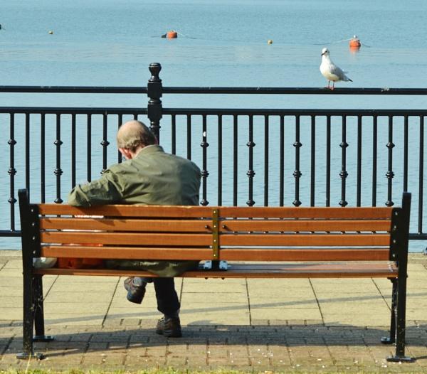 bench by mogobiker