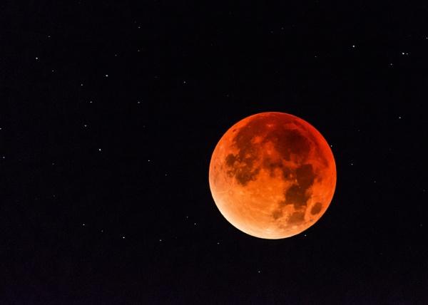 Lunar Eclipse by MossyOak