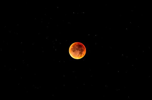 Blood moon by gouldii